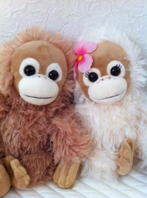 奈良の結婚相談所・婚活ブログ